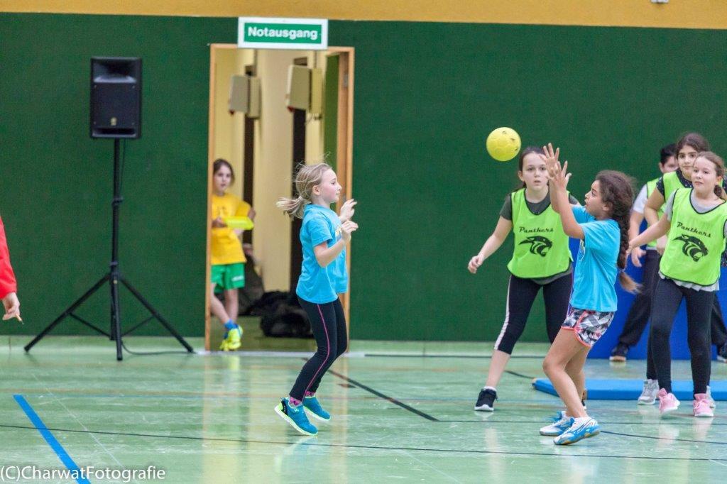 2018-01-09_Handballturnier (180 von 334)-163