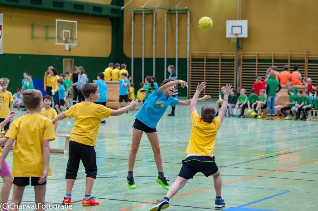 2018-01-09_Handballturnier (222 von 334)-205