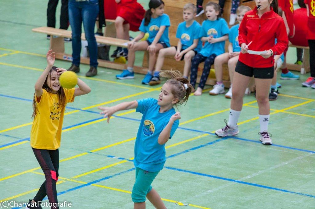 2018-01-09_Handballturnier (55 von 334)-38