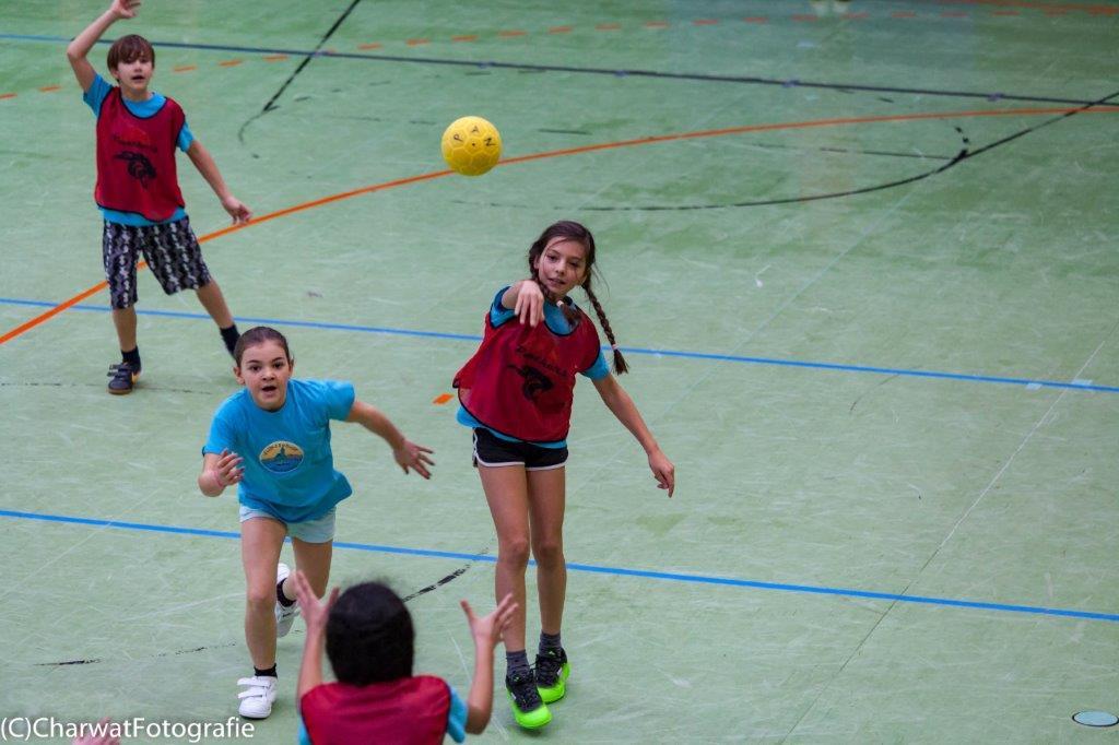 2018-01-09_Handballturnier (91 von 334)-74